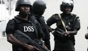 The DSS: Presidential Handyman?