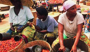 Towards food Security in Nigeria