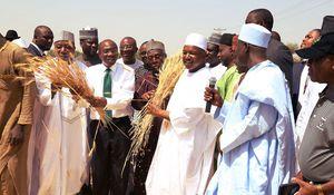 Farming for Monetary Policy